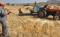 Tarım Bakanlığı Destekleme Ödemeleri 2017